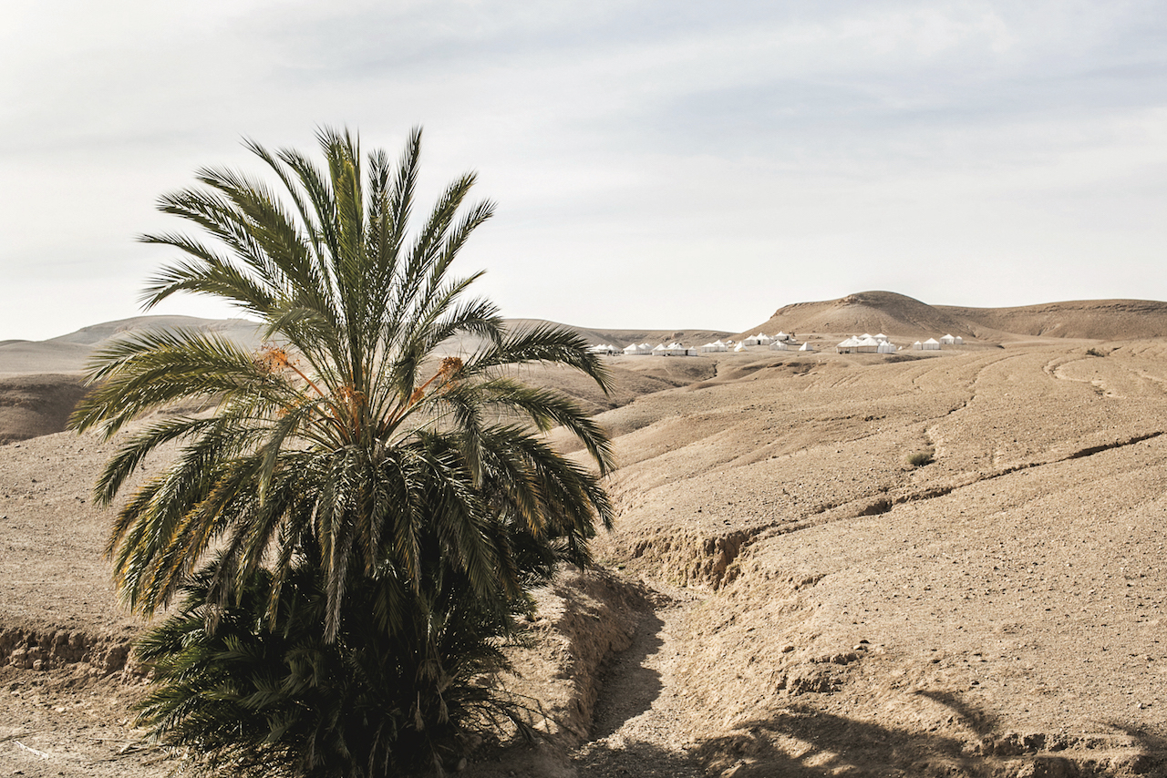 A day out in at Scarabeo Camp in the Agafay Desert near Marrakech